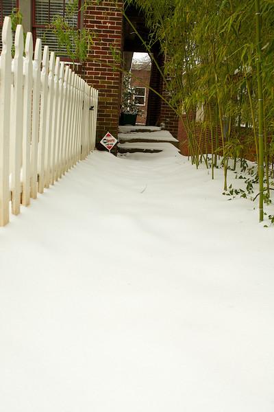 Snow2011_ 031