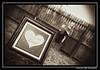 STUBBS  DECEMBER 2013 CATHERINE KRALIK PHOTOGRAPHY  (362)_pe