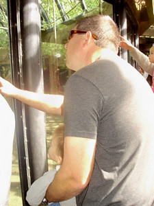 Mark and Joey looking at the giraffe