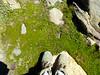 Feet and ground #3