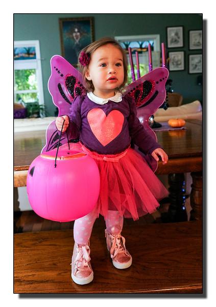 """""""The Fairy"""""""