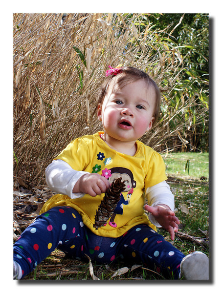 """""""Sadie's Day In The Yard""""<br /> Sadie Faye came to Pepere's house the other day and had some fun exploring nature and had a photo shoot while she was at it!"""