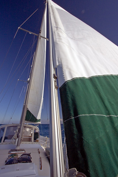 Roller furling headsail is a beauty.
