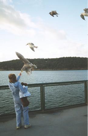 bird_feeder001