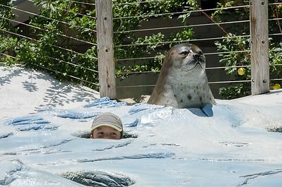 San Diego Zoo 2015-07-09