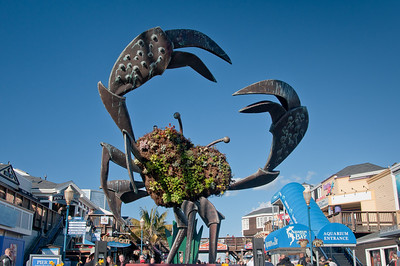 Pier 39 crab sculpture