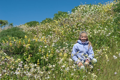 Sara, among the wildflowers at Point Reyes.