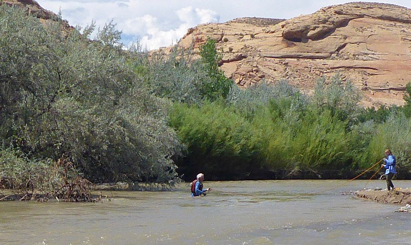 """The sweeper on the left managed to """"grab"""" Marla's hat as the raft  hit it straight on. We took the time to retrieve it. I waded over to get the hat but had to swim back as Marla is keeping me from being swept downriver.<br /> Photo by Rena Tishman"""