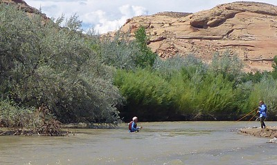"""The sweeper on the left managed to """"grab"""" Marla's hat as the raft  hit it straight on. We took the time to retrieve it. I waded over to get the hat but had to swim back as Marla is keeping me from being swept downriver. Photo by Rena Tishman"""