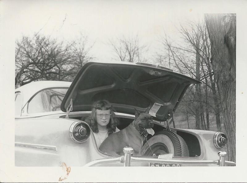 sandy 1953