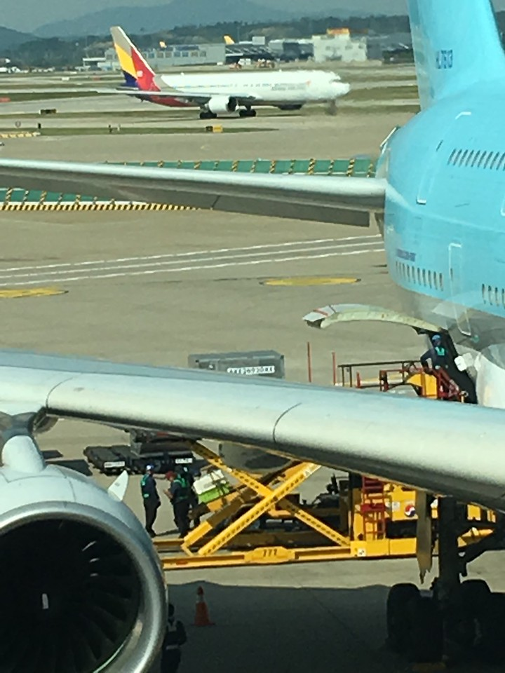 Changing planes in Seoul. VIP crate headed up the yellow ramp.