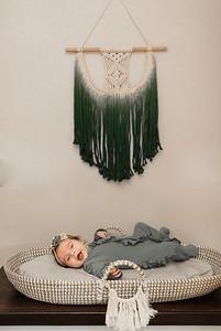 Alexandria Vail Photography Lifestyle Newborn Session Sawyer 013