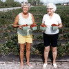 "Ruth and Grandma Gladys - strawberry picking time in Florida - 1978.<br /> When you view ""Our Irish Heritage"" the music playing in the background is grandma playing her mouth organ on the way back to Michigan from this trip to Florida."