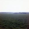landscape near Holyrood Palace