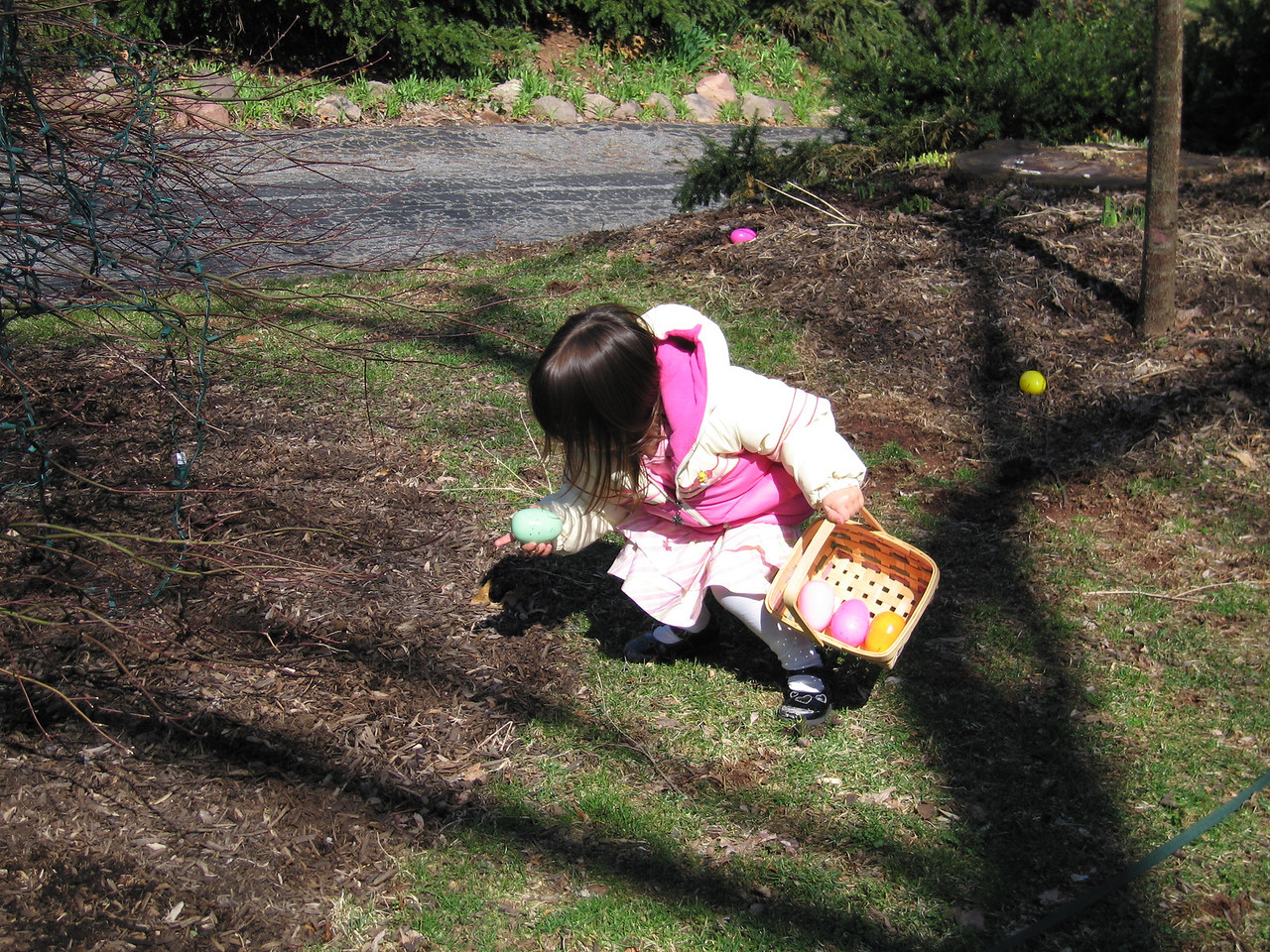 Kaidyn hunting Easter Eggs
