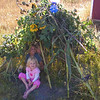 A sunflower teepee