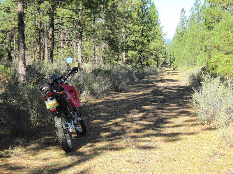 Matt's ride to up Three Creeks Butte.