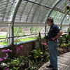 Glen in the green house