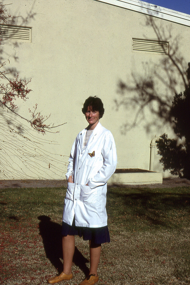 Research years in Davis, CA.  Carolyn Roeske worked as part of a research team Involving the interactions of a class of chemicals called cardenolides, which are found in milkweeds, and monarch butterflies.