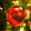 Christmas09 027