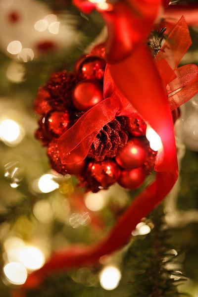 christmas-2009-0075