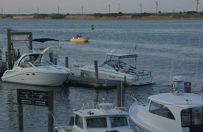 Boats at Bahr's Landing Marina