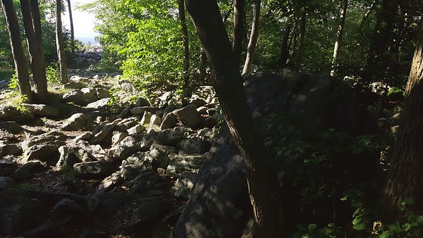 Side trail near Bake Oven Knob