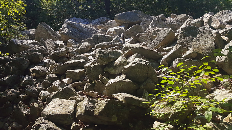 Boulder field near Bake Oven Knob