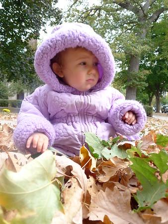 Silvia Sept-Nov 2012