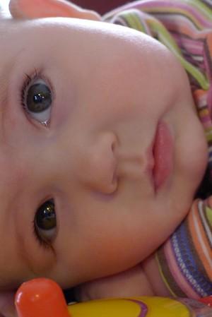 Silvia at at 6 months 2/23/12