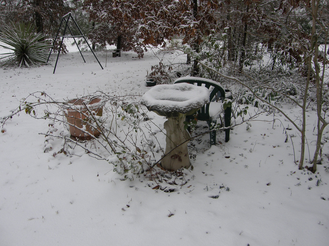 My bird bath covered in snow.