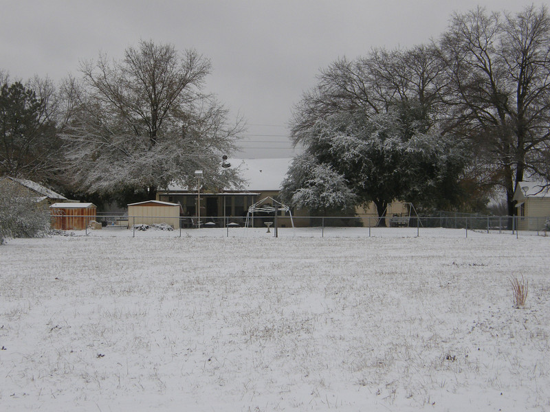 Snow in the pasture.