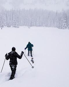 Snowshoeing - Dec 07