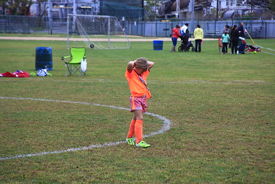 Soccer Stars !  Fall 2016