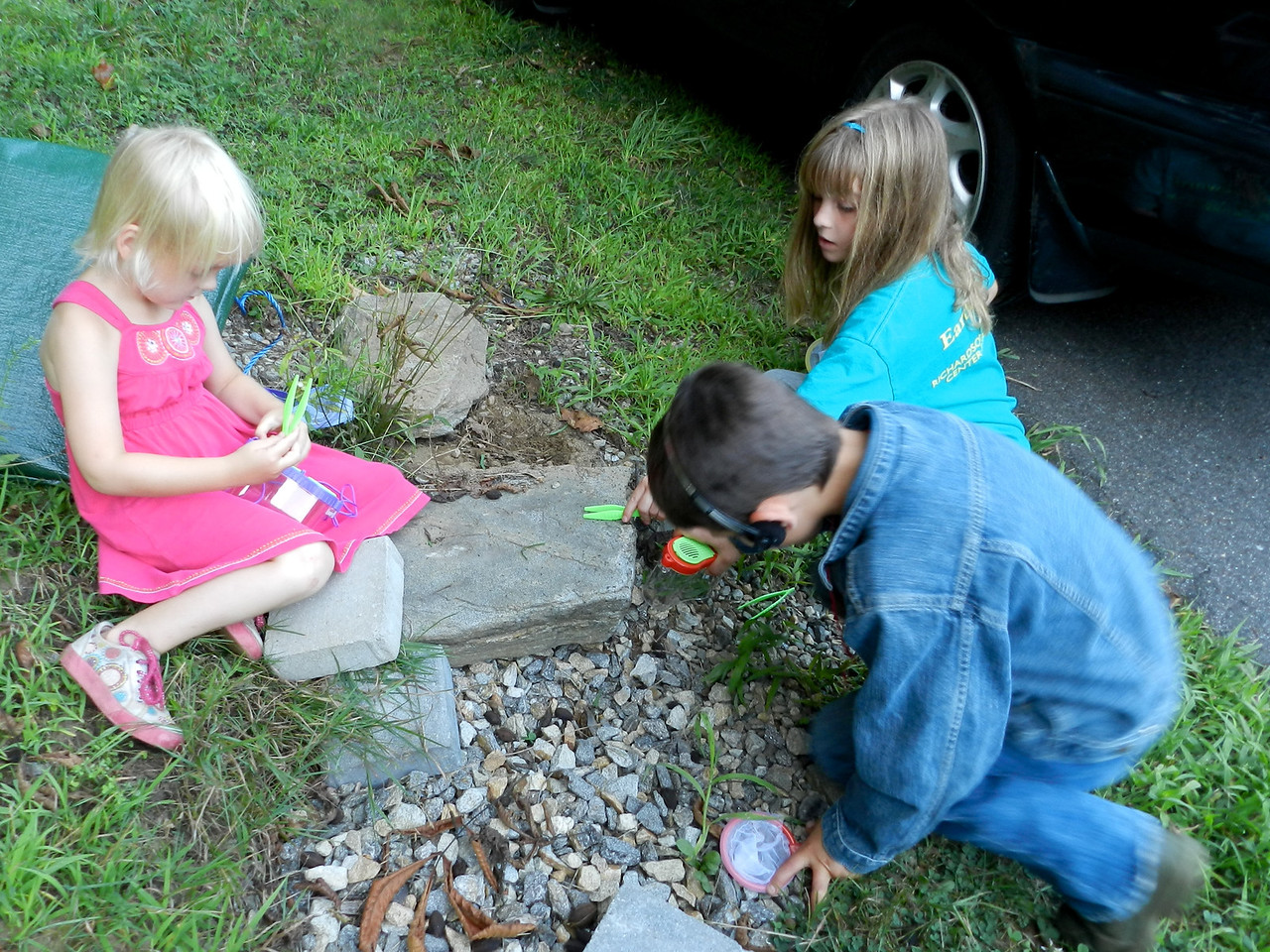 Allegra, Sofia and Carson catching bugs