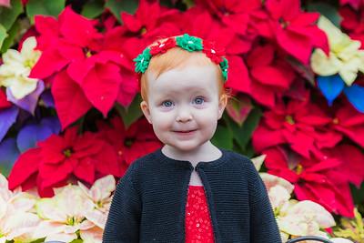 Sofia's Christmas at Krohn
