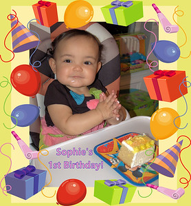 Sophie's First Birthday Party