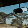 Entering the Serengeti National Park, Tanzania
