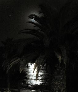 Laguna Beach in the moonlight