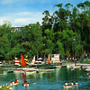 Postcard, Lake at the Nuevo Bosque de Chapultpec, Mexico City, Sumer 1975.