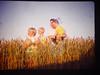 American Harvest.