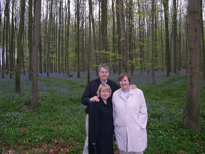"""We drove to the """"blue bells"""" forest south of Brussels.  For two weeks in the spring, this forest is covered in blue bells.  Even on a cloudy day, it was lovely."""