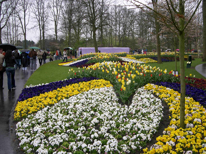 The tulip beds are laid out by some of the major tulip growers around Amsterdam.