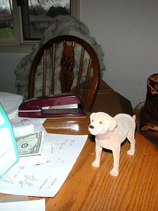 Stormie says...a dollar and a dog! The dog is so small he can fit on the table.