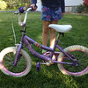 "Walmart special ""Princess"" bike. This is in decent shape with expected wear and tear from my girls who have ridden it pretty hard. It has a few rust spots and scrapes. It needs a new brake pad for the front brakes. Price = $20."