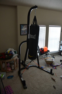 punching bag with stand
