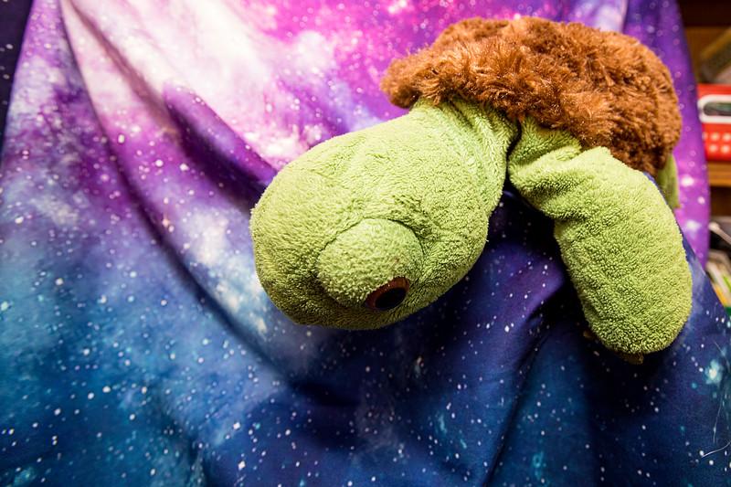Stuffie-Day-0126.jpg