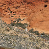 Calico Hills - see the hikers going down into the canyon?
