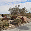 Desert landscaping, Red Rock visitor center