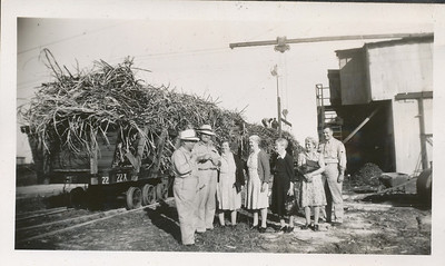 Hay Train